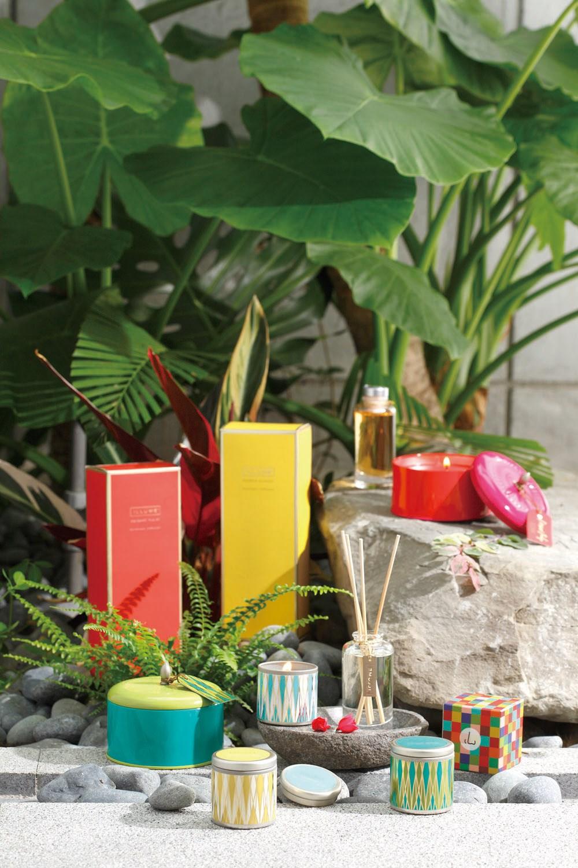ILLUME香氛蠟燭 / 馨香竹系列: 天然大豆蠟純手工製作 燭芯使用無鉛棉花