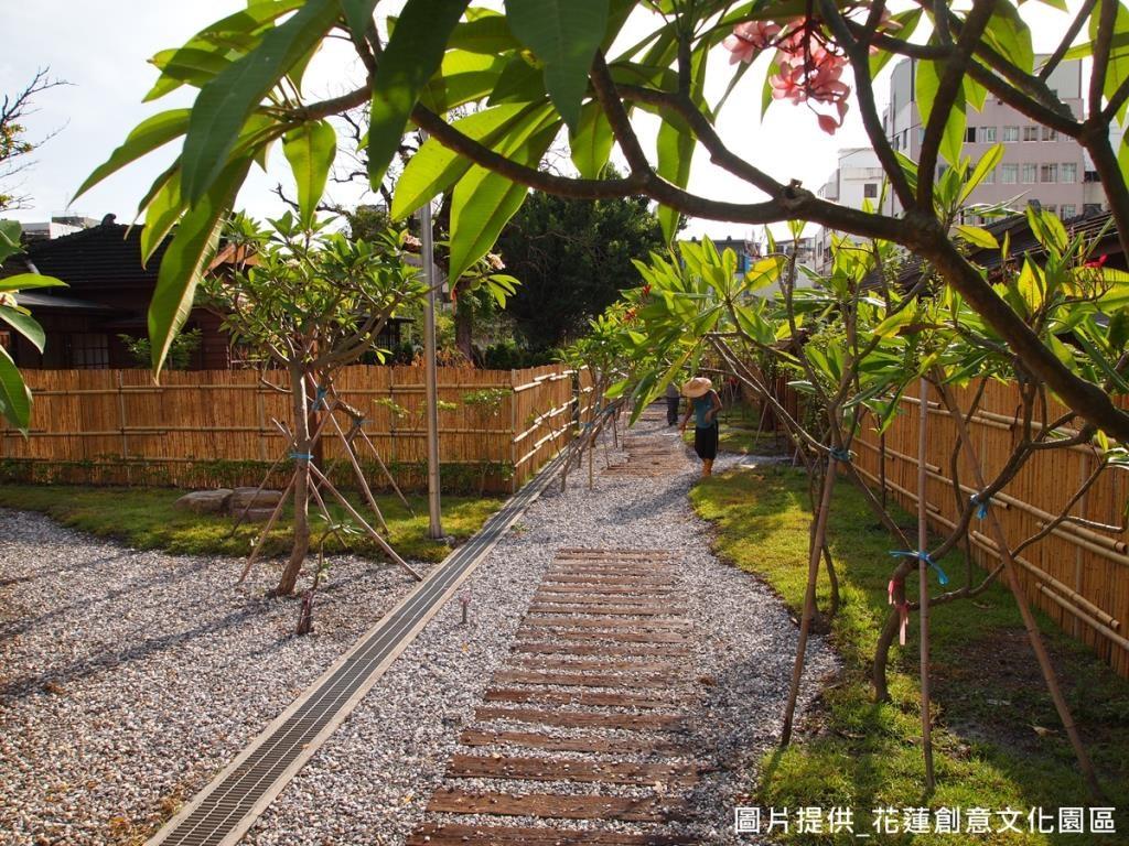 「鹿角林」 正好為雞蛋花學名,整條步道栽種許多雞蛋花。