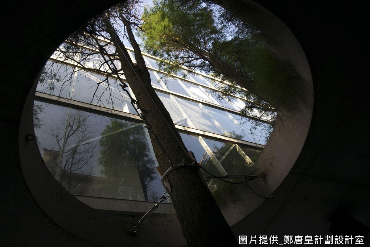 上方天花板還刻意挖空,讓樹木可從底部向上生長,抬頭往上看,頗有無限延伸的視覺趣意。