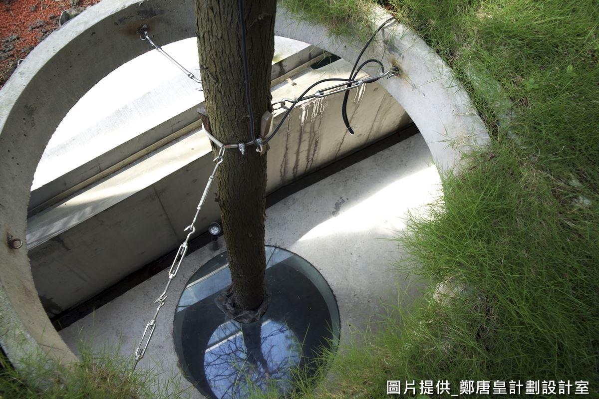 綠色草坪規劃特殊循環系統,分導雨水並可儲放水分,即便多天不下雨,也讓底部的樹木得以吸收水分,獲得灌溉。