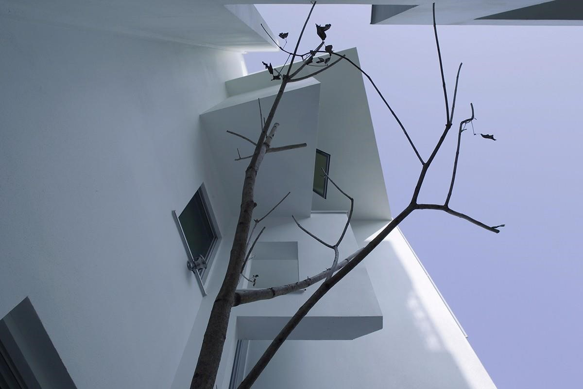 圖片提供_董育綸建築師事務所/一樓部分開口窗有在室內創戶外的感受,光、綠意都能隨窗景導引入室。
