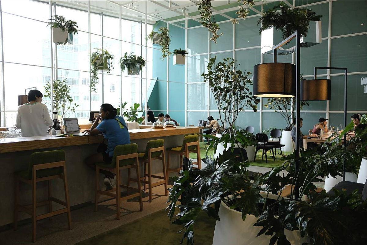 採光良好的溫室咖啡店,讓人在百貨商場裡也能感受大自然的芬多精。(攝影:蘇湘芸)