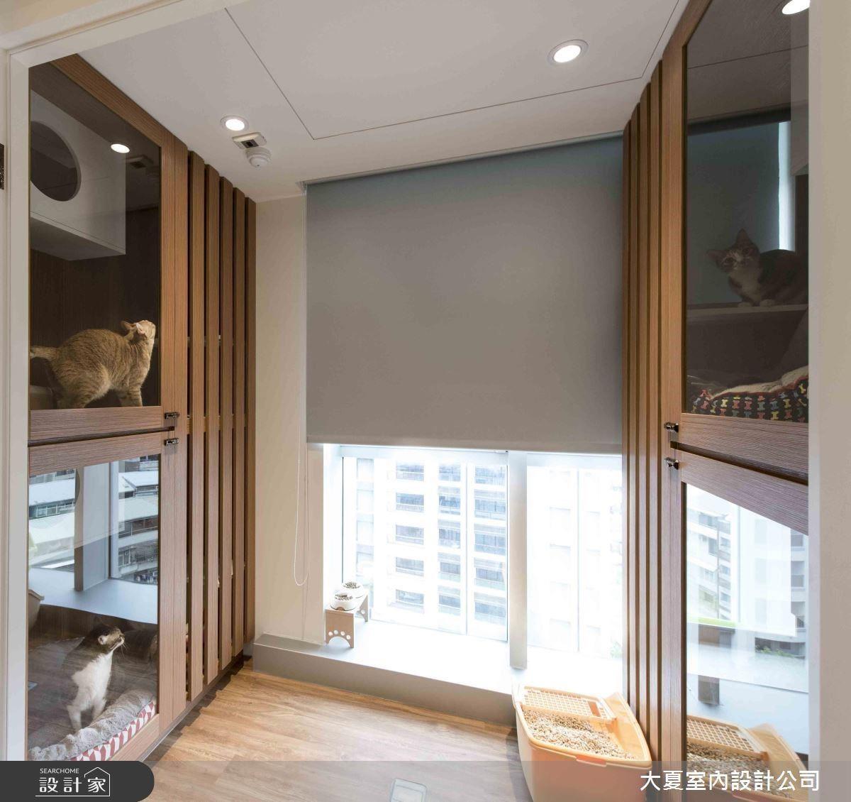 貼心的四間貓咪套房,讓貓咪有了歸屬感,而木格柵塑造空間穿透感。