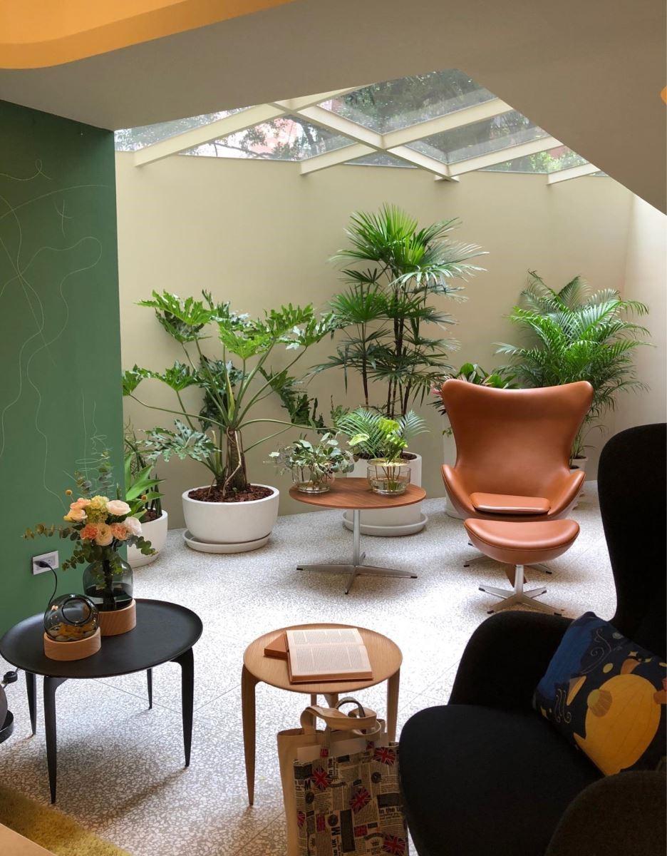 室內的小天窗讓人可讓人感受四季變換,同時引入適當的採光。