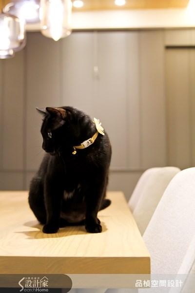 38坪新成屋(5年以下)_療癒風餐廳寵物案例圖片_品楨空間設計_品楨_09之11