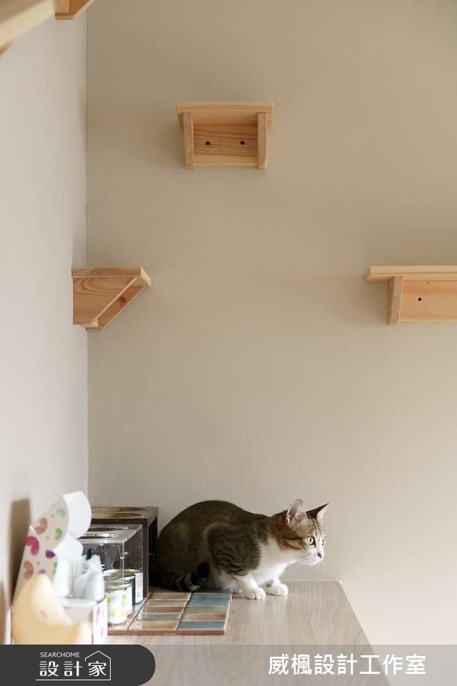 25坪中古屋(5~15年)_北歐風寵物案例圖片_威楓設計工作室_威楓_20之7