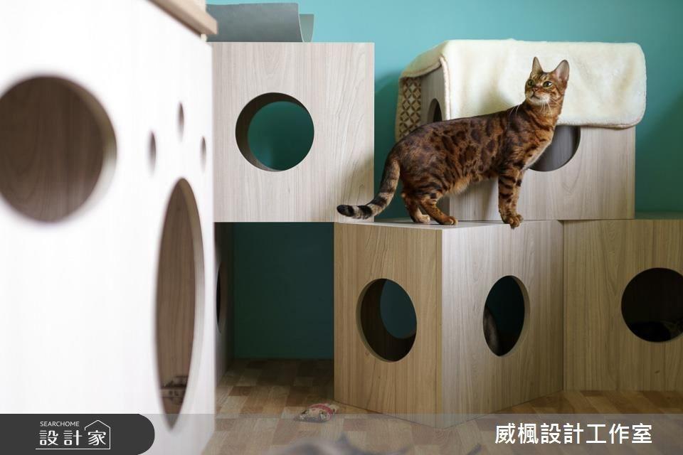 25坪中古屋(5~15年)_北歐風寵物案例圖片_威楓設計工作室_威楓_20之13