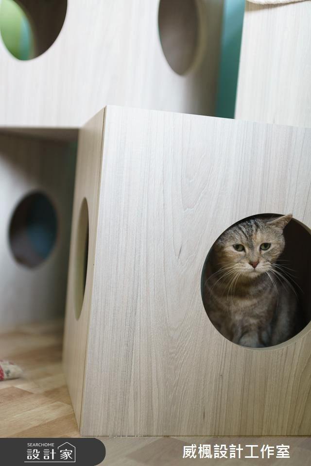 25坪中古屋(5~15年)_北歐風寵物案例圖片_威楓設計工作室_威楓_20之14