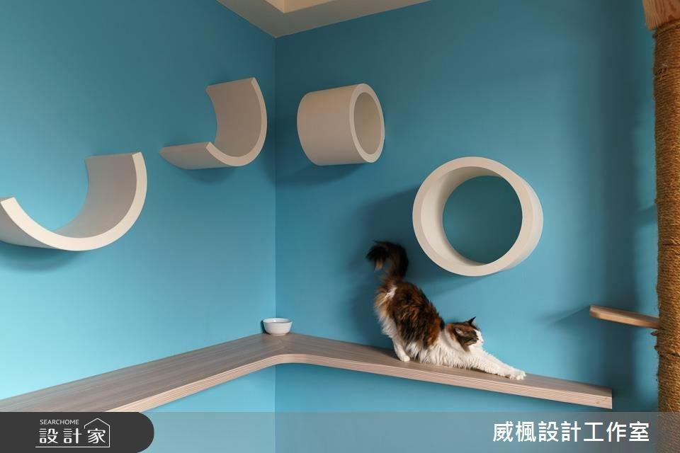 TIPS 6:造型櫃門兼具收納及貓窩通道,還能成為空間裝飾!