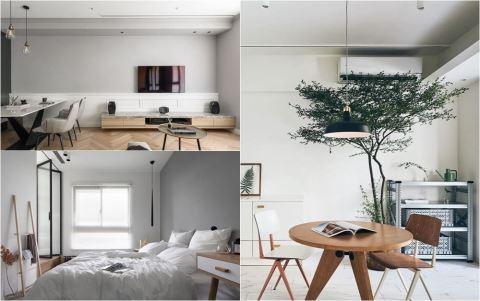 我容易失眠、體質偏寒,裝潢該注意什麼?關於四種體質的裝潢調養提案!你適用哪一種?