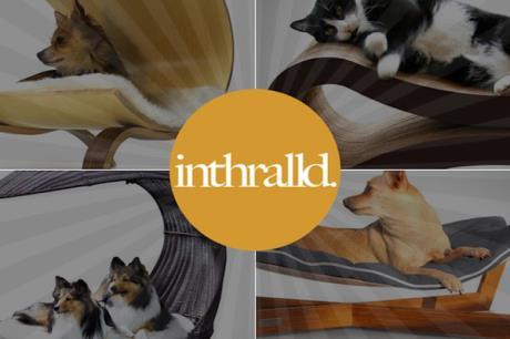 11 個前衛設計的現代寵物睡床