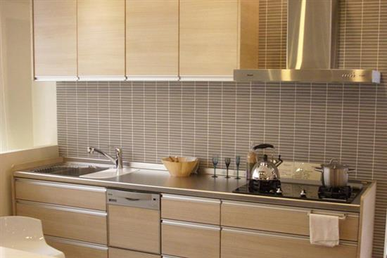 一太日本原裝淺木紋一字型不鏽鋼檯面系統廚具-廚房設備