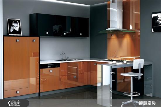 智慧廚房 AIKitchen-特殊訂製 - 不銹鋼門板-特殊訂製 - 不銹鋼門板,智慧廚房 AIKitchen,廚房門板