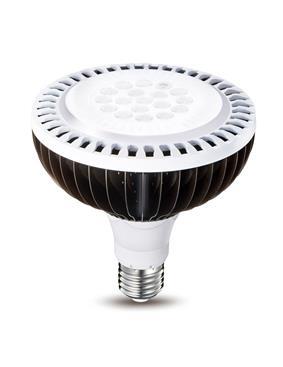 威剛照明-ADATA威剛_燈泡PAR38-ADATA威剛_燈泡PAR38,威剛科技股份有限公司,燈泡