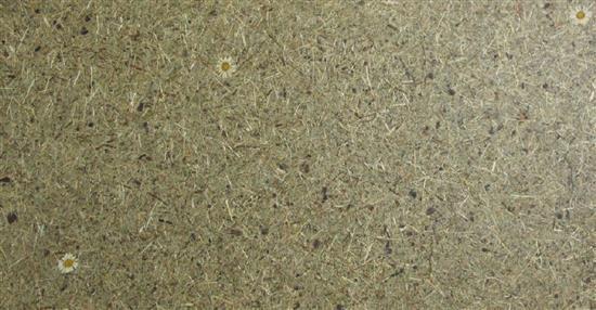 泛亞材料 PA Material -阿爾卑斯山的氣味_高山乾草和瑪格利特-阿爾卑斯山的氣味_高山乾草和瑪格利特,泛亞材料 PA Material ,美耐板