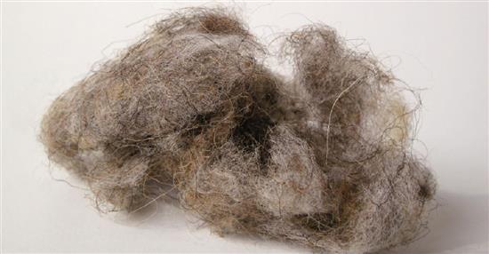 泛亞材料 PA Material -阿爾卑斯山的氣味_提洛爾山羊毛-阿爾卑斯山的氣味_提洛爾山羊毛,泛亞材料 PA Material ,美耐板
