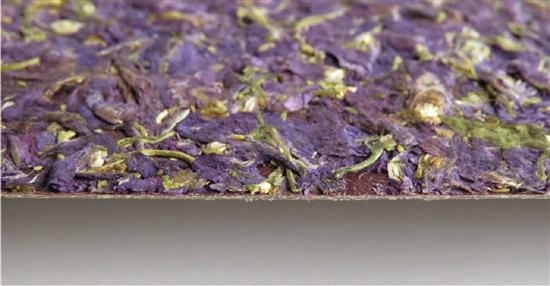 泛亞材料 PA Material -阿爾卑斯山的氣味_紫色飛燕草-阿爾卑斯山的氣味_紫色飛燕草,泛亞材料 PA Material ,美耐板