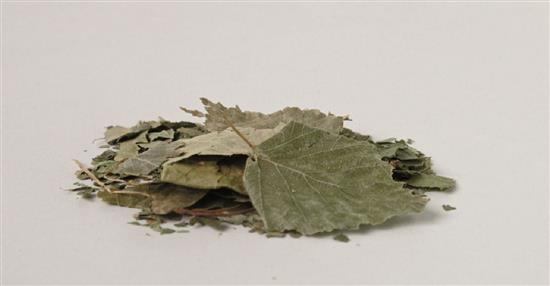 泛亞材料 PA Material -阿爾卑斯山的氣味_樺樹葉-阿爾卑斯山的氣味_樺樹葉,泛亞材料 PA Material ,美耐板